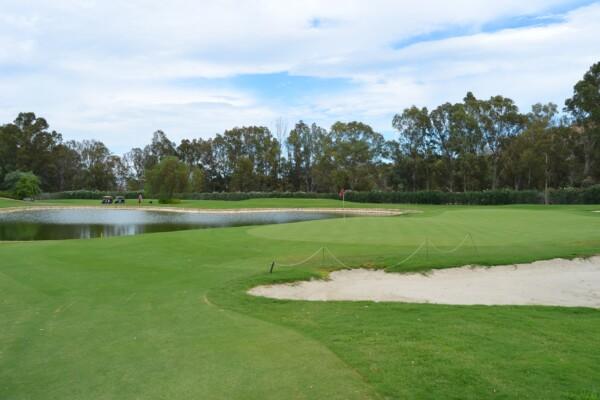 golf-1649219_1920 (1)